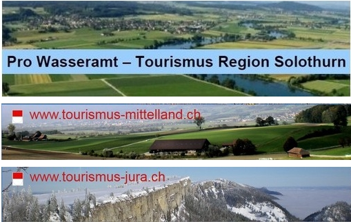 immobilien solothurn868